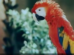 Katharina und ihre wilden Hengste (1983) - Cut scenes tube porn video