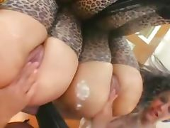 Ultra hot panties and anal acrobats tube porn video