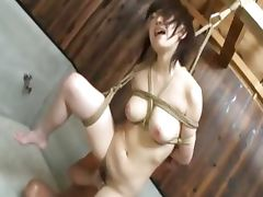 extra beautiful asian bondage tube porn video