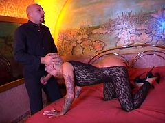 Tattooed slut gets fucked by hung bald guy on bed tube porn video
