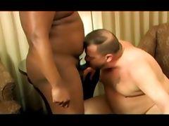 one black bear one white bear tube porn video