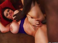 Big tit mature slut Daphne Rosen loves black tube porn video