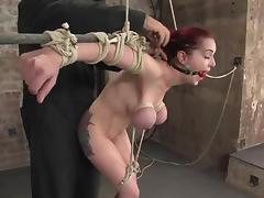 Divine redhead bunny Mz Berling is getting her tits squeezed tube porn video