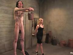 Skinny guy gets his balls tortured and ass drilled by a girl tube porn video