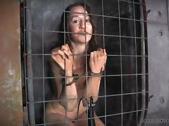bitch captive in a cage tube porn video